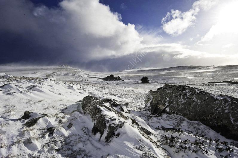 Snow Scenes-29