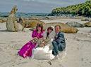 Sea Lion Island Wedding