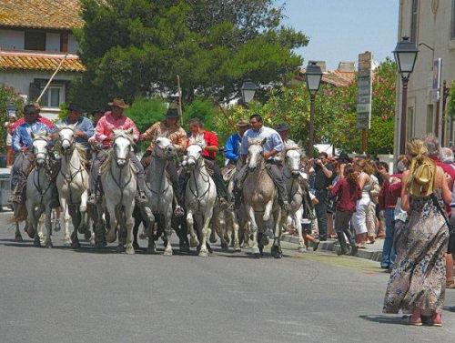 Camargue Festival