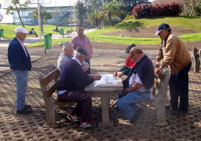 Domino's in the Park