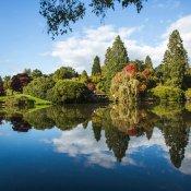 Sheffield Park-8  res