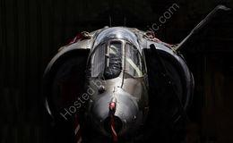 RAF Harrier GR-3