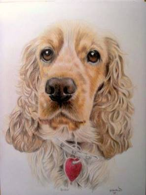 Golden cocker spaniel pet portrait from photo