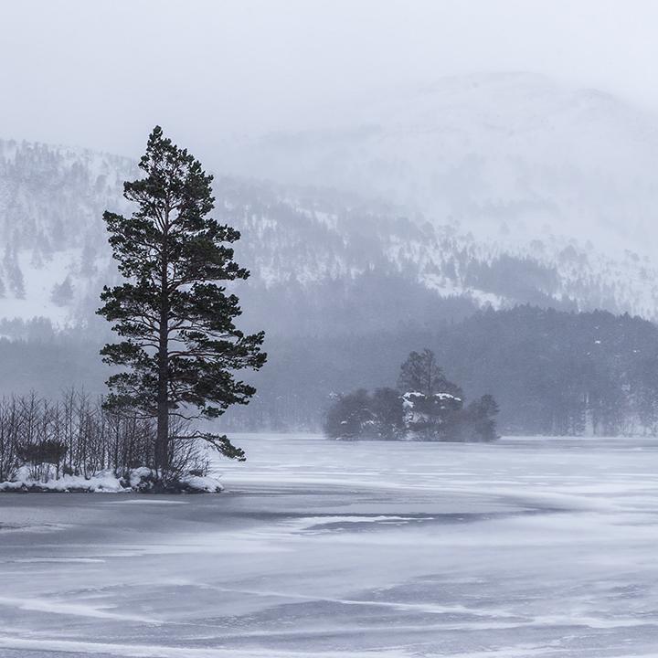Loch an Eilein Blizzard