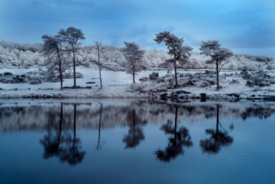Knapps Loch Reflections