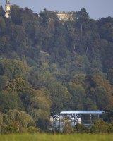 Cliveden Hanging Woods