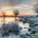 Frosty Dawn