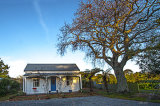 128 year old oak & villa