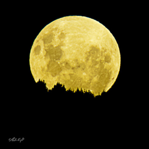 Full Moon over Arapaepae Ridge, 0973