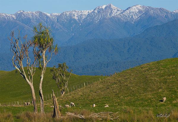 Tararua Range from Moutere_2064