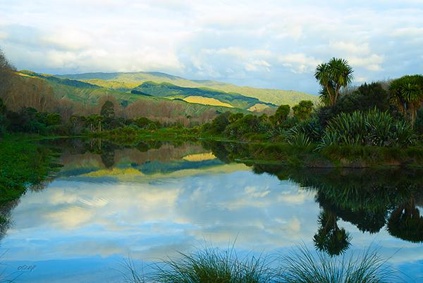 Chrystall's Lagoon, Otaki 0058