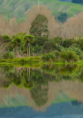 Otaki Lagoon 0135