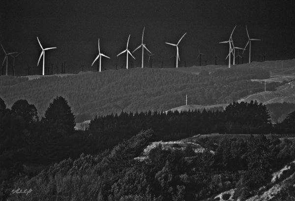 Turbines from Anzac Park P.N. 0135