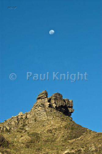 Moonrises at Te Hapu