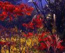 Autumn colours, Mt Rokko, Kobe