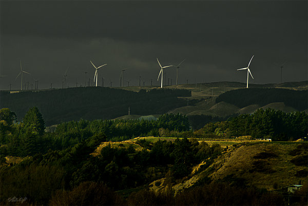 turbines-from-AnzacPk_0130