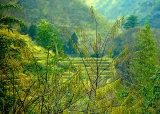 Wajima Hills