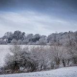 Winter on Dell Road