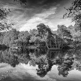Heath Pond
