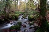Windermere stream