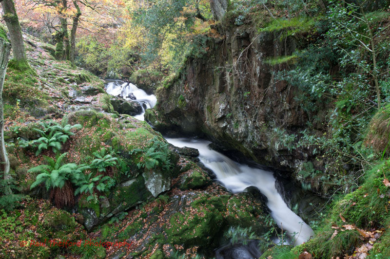 Part of Aira Force