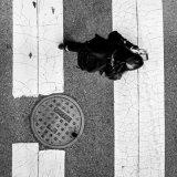 walk - don't walk