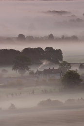Farm in the Mist