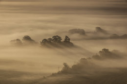 Pewsey Vale in mist