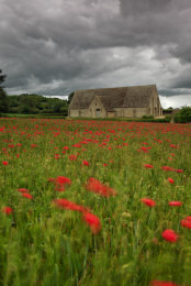 Poppy field in front of the Tithe Barn Great Coxwell