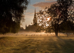Salisbury Cathedral from Harnham Meadows