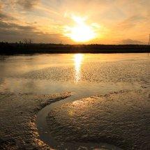 River Blyth 9