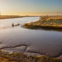 River Blyth 19