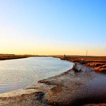 River Blyth 20