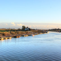 Southwold Harbour 1
