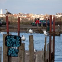 Southwold Harbour 5
