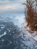 Pannonian Frost