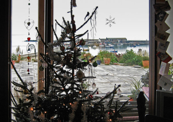 Christmas Tree & Harbour