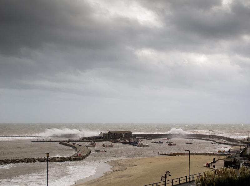 November storm-2972