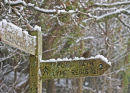 Signpost at Timber Hill, Lyme Regis