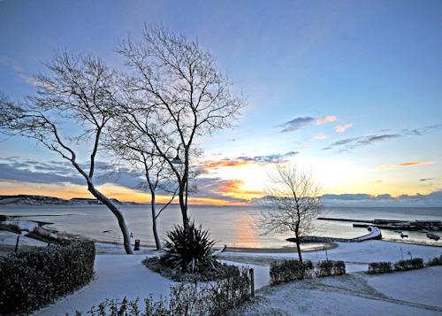 Snowy Dawn in Lister Gardens