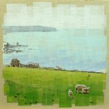 Sheep at Bigbury Bay II