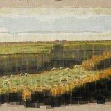 Sheep at Bigbury on Sea