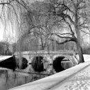 Bridge at Trinity Colege.