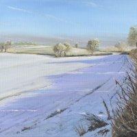 Fields between Hanwood and Whitley Grange Farm