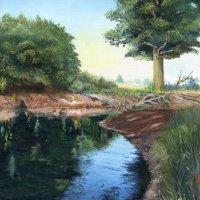 The Rea Brook at Hanwood 2