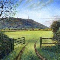 Wrekin from the north