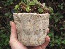 Hypertufa plant pot, planter, Jelly Mould Small.
