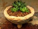 Hypertufa planter, plant pot.