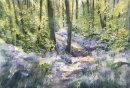 Middleton Woods - Ilkley