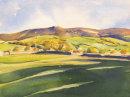 Hebden Meadows